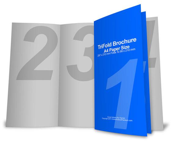 6 panel brochure template