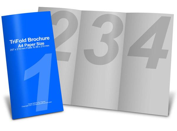 six panel brochure template